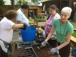 Horticulture training for deaf people