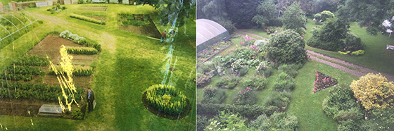 Share Garden before and after