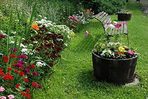 The Share Garden