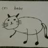 Roxy's cat