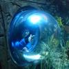 Exploring the deep!